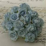 Rozes 30mm - Old blue
